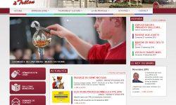 site-web-trelon